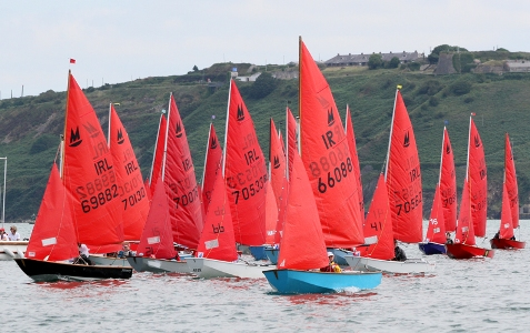 Mirror dinghies racing in Cork harbour